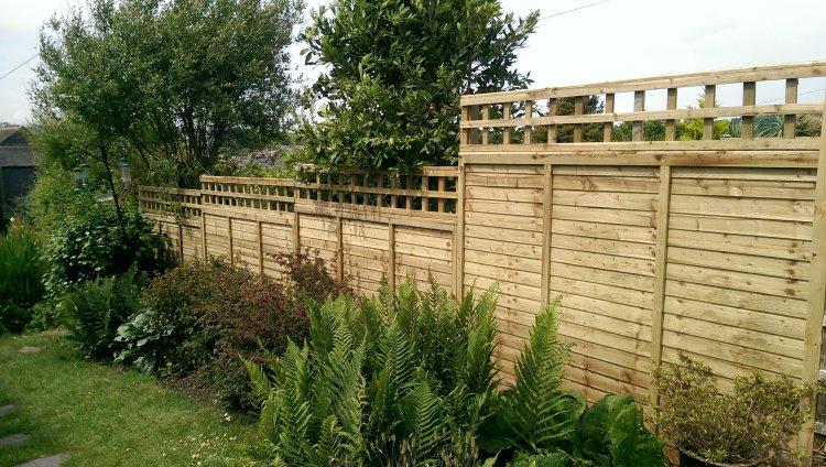 Overlap panel fence with trellis