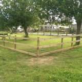 50m post & rail orchard fence