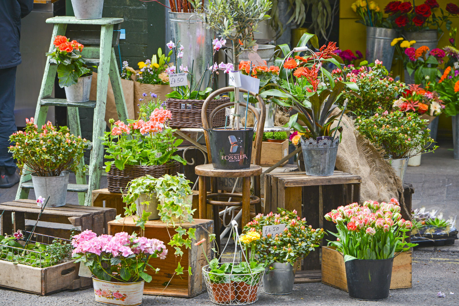 local london area photo flower stall