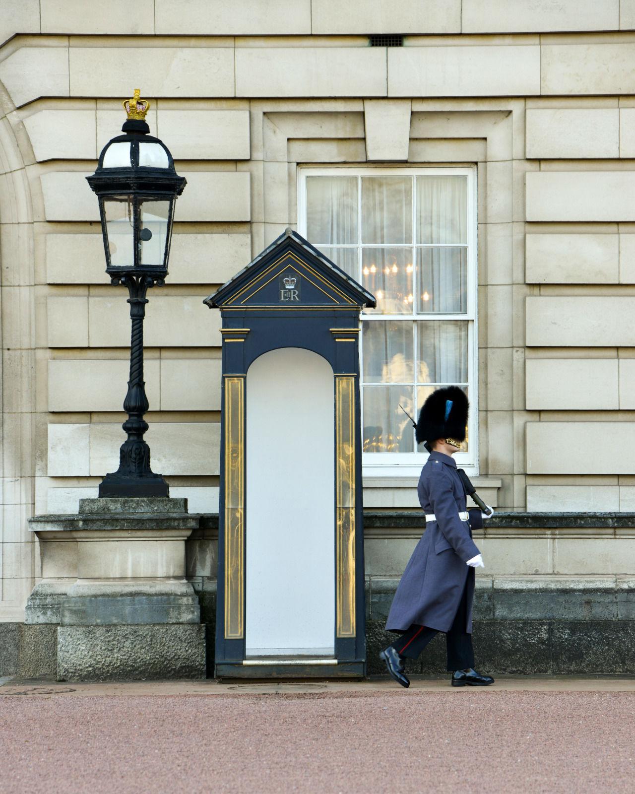 local london area photo buckingham palace