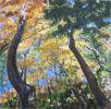 Autumn trees at Bash Bish Falls