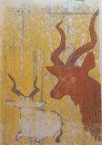 Tring antelopes