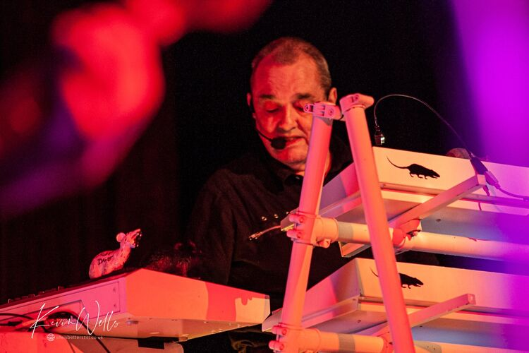 Dave Greenfield - Stranglers
