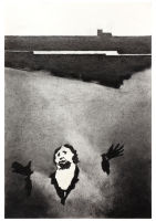The marsh after Goya
