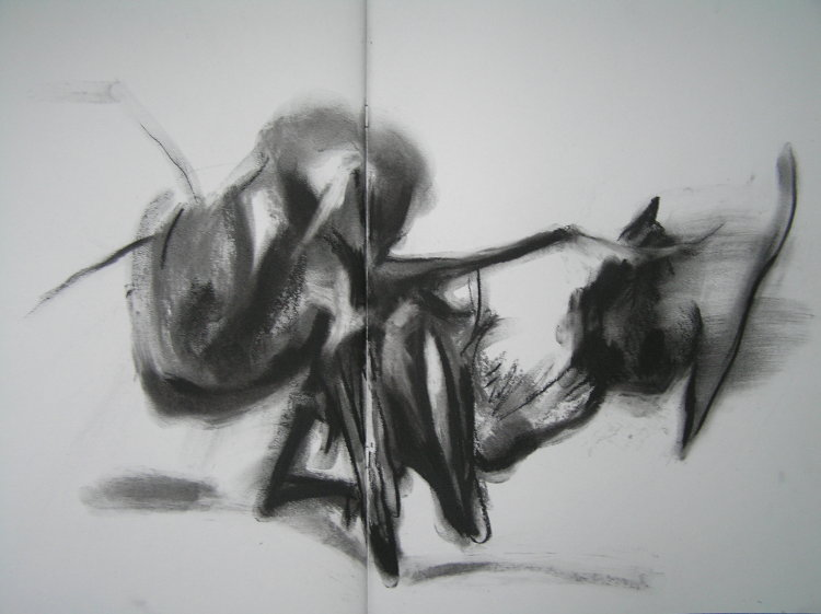 Ants, Fighting (2006) charcoal on paper