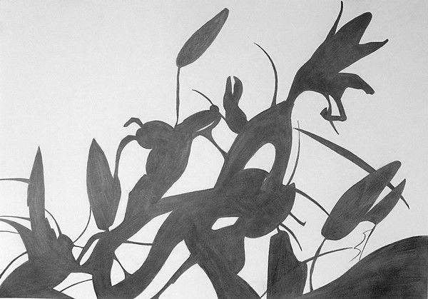 Lilies (2017) 42cm x 59cm