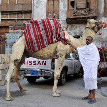 2 Hajji with camel & Nissan