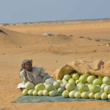 5 Melon seller by side of the road