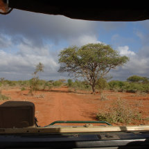 DSC 0127 Typical Road through Tsavo
