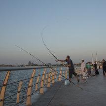 DSC 1534 FishingAlHamraCorniche