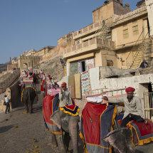 IND 5892 Amber Fort