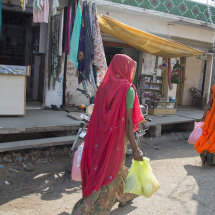 IND 6117 Colourful Saris of Rajasthan