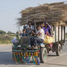 IND 6173 Farming Community Rajasthan