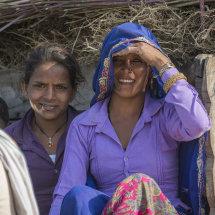 IND 6175 Farming Community Rajasthan