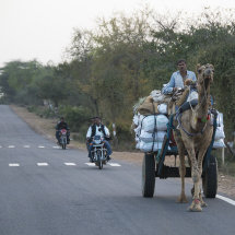 IND 6560 CamelCarts&MotorBikes