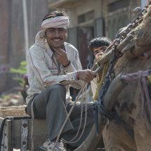 IND 6640 Camel Cart Driver Sawai Madhopur