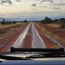 BAL9542 Tsavo after some rain