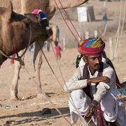 Camel Fair, Pushkar, Rajasthan, India