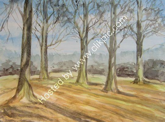 Bushy Park watercolour