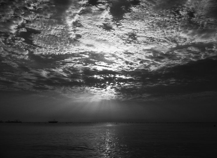 Black & White Sunset