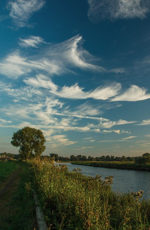 Whispy Clouds over The Broads
