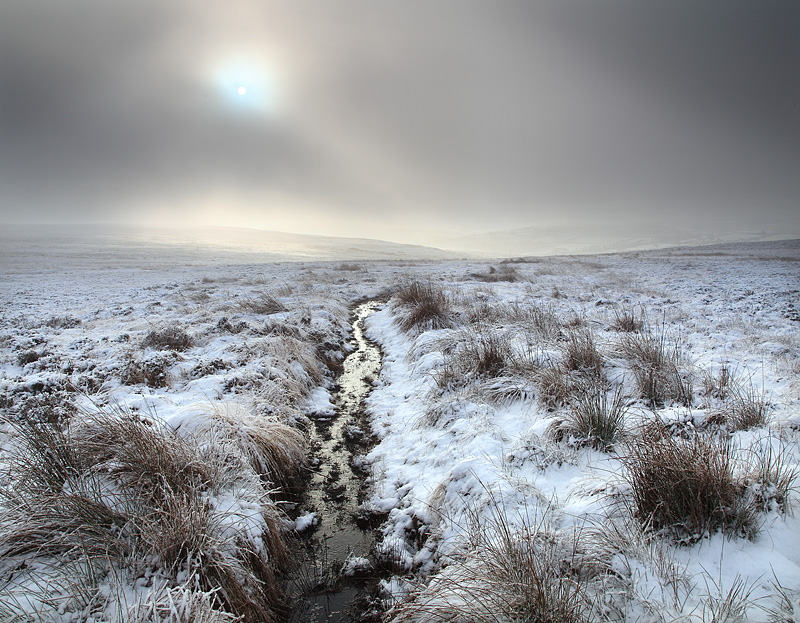 Moorland Winter 2