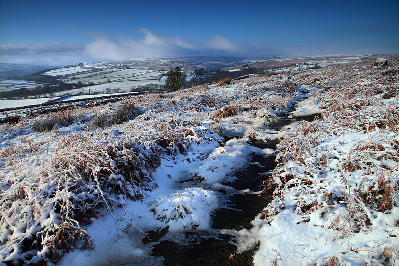 Commondale Winter 3