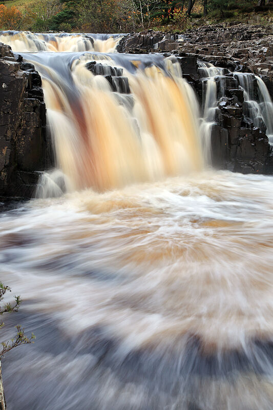 nw 360 Low Force 2