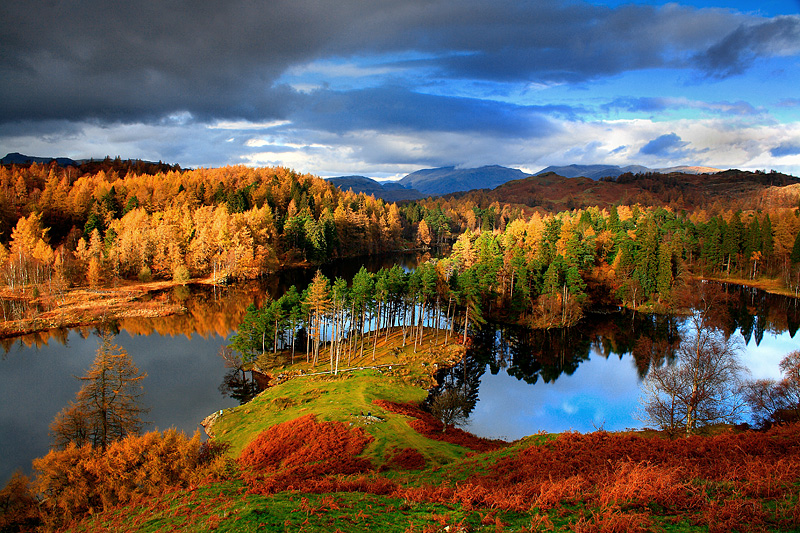 Tarn Hows Autumn 1