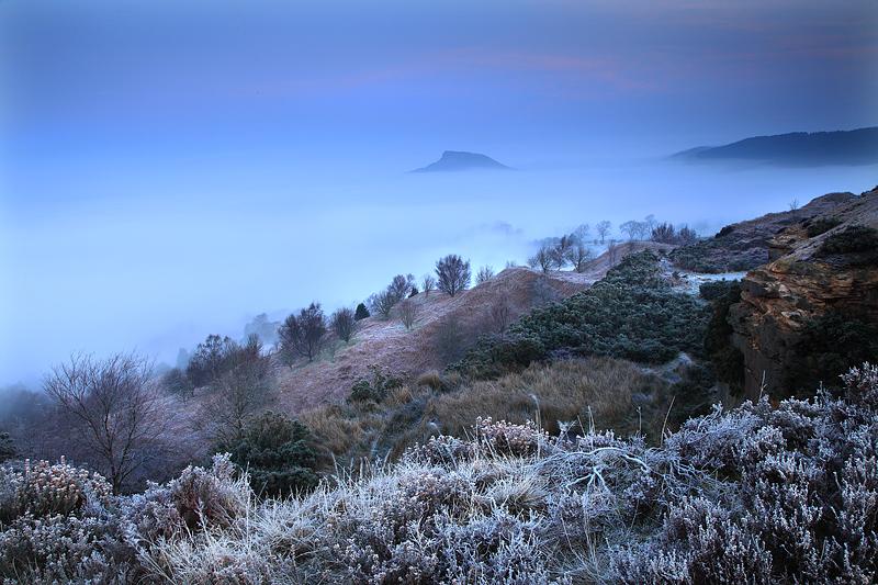 Roseberry Mist and Fog 2
