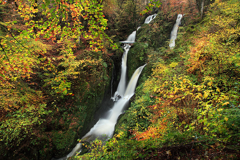 Stock Ghyll Force 3