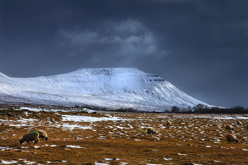 Ingleborough Winter 1