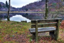 Relax at Yew Tree Tarn