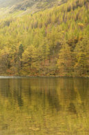 Buttermere - Reflections of Autumn