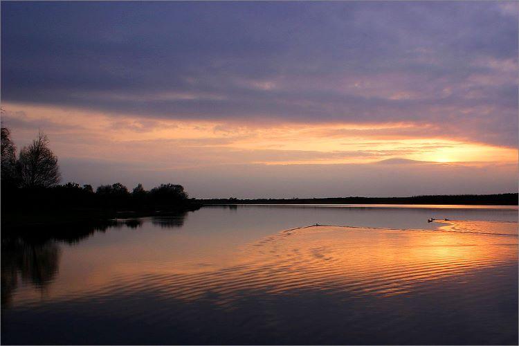400015 - Hatchett Pond Sunset