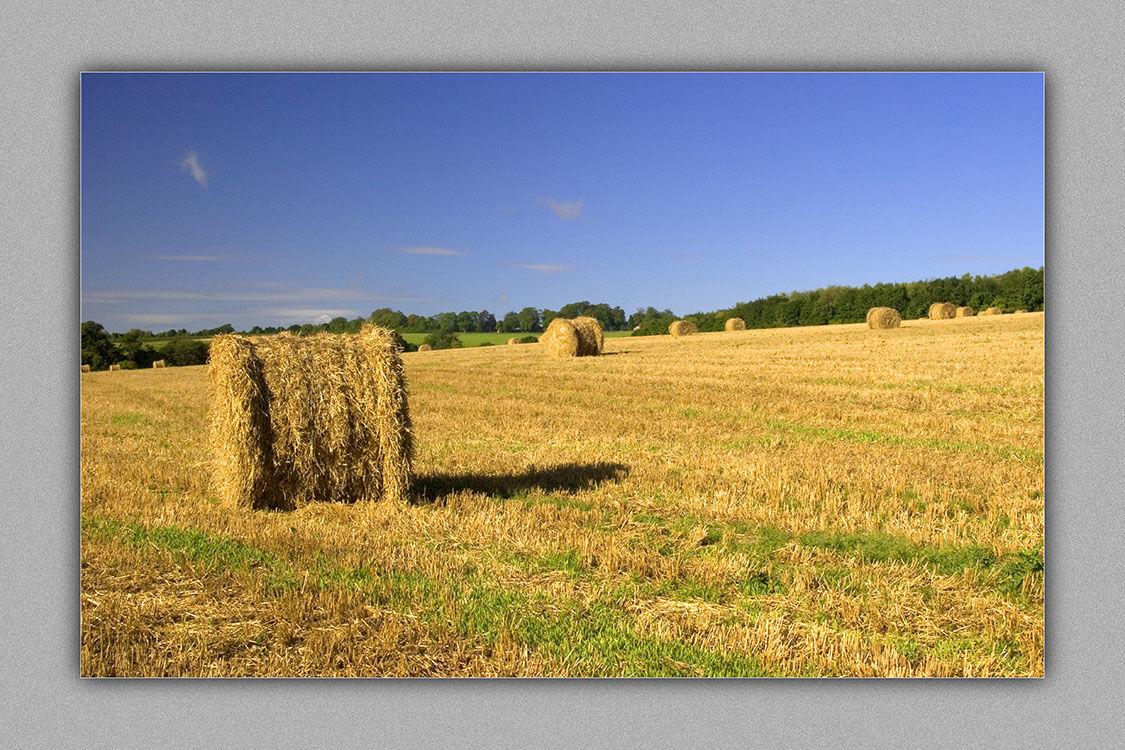 400036 - Straw Bales
