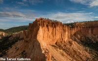 Pink Cliffs at Bryce