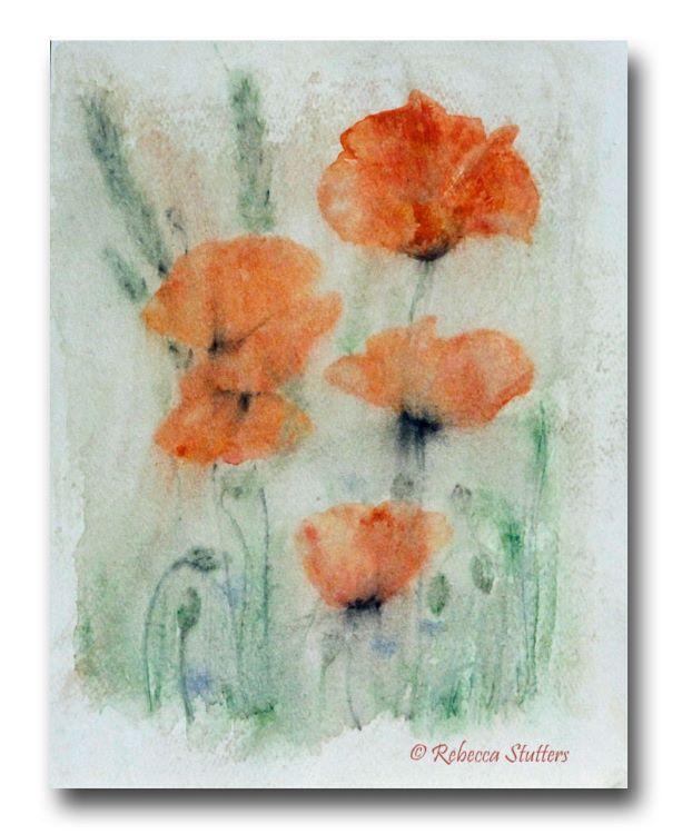Poppies-1