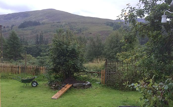 Gerry's garden