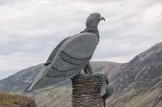 slate eagle