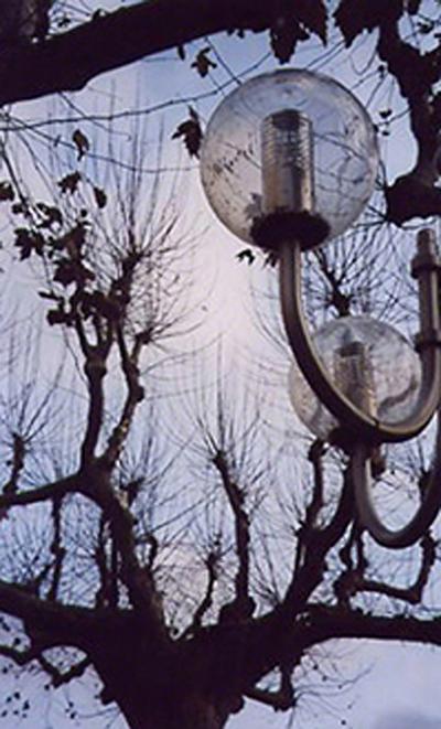 Collioure, 2004