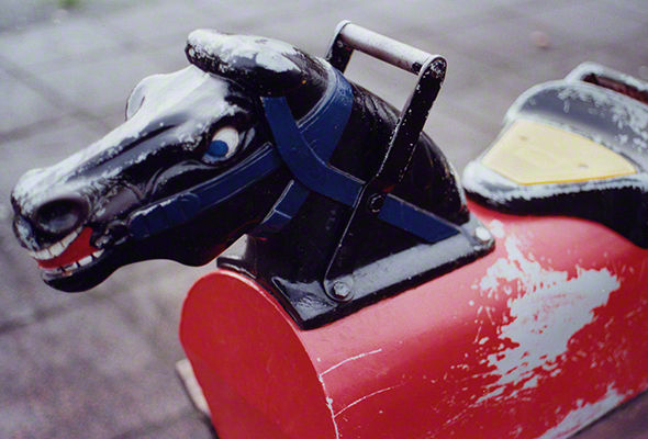 Horse, 1999