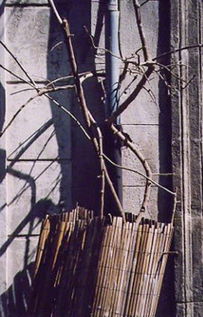 Arles, 2005