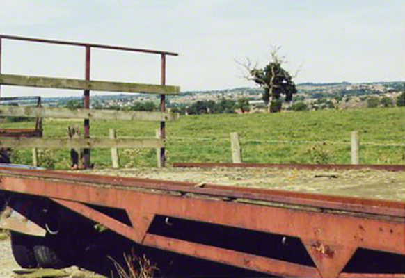 Trailer and Tree, 2001