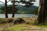 loch an eilein and castle