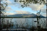 skiddaw from bassenthwaite lake
