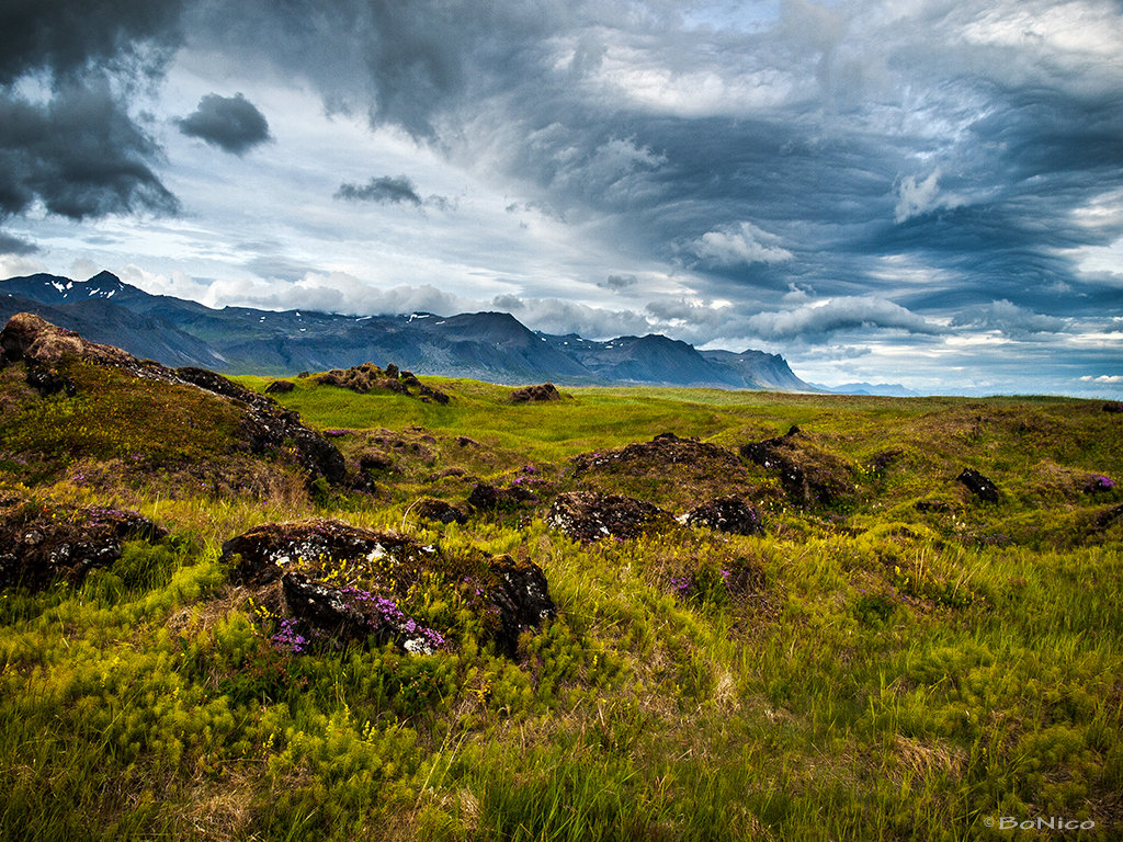 Iceland 9 - Snaefellsnes