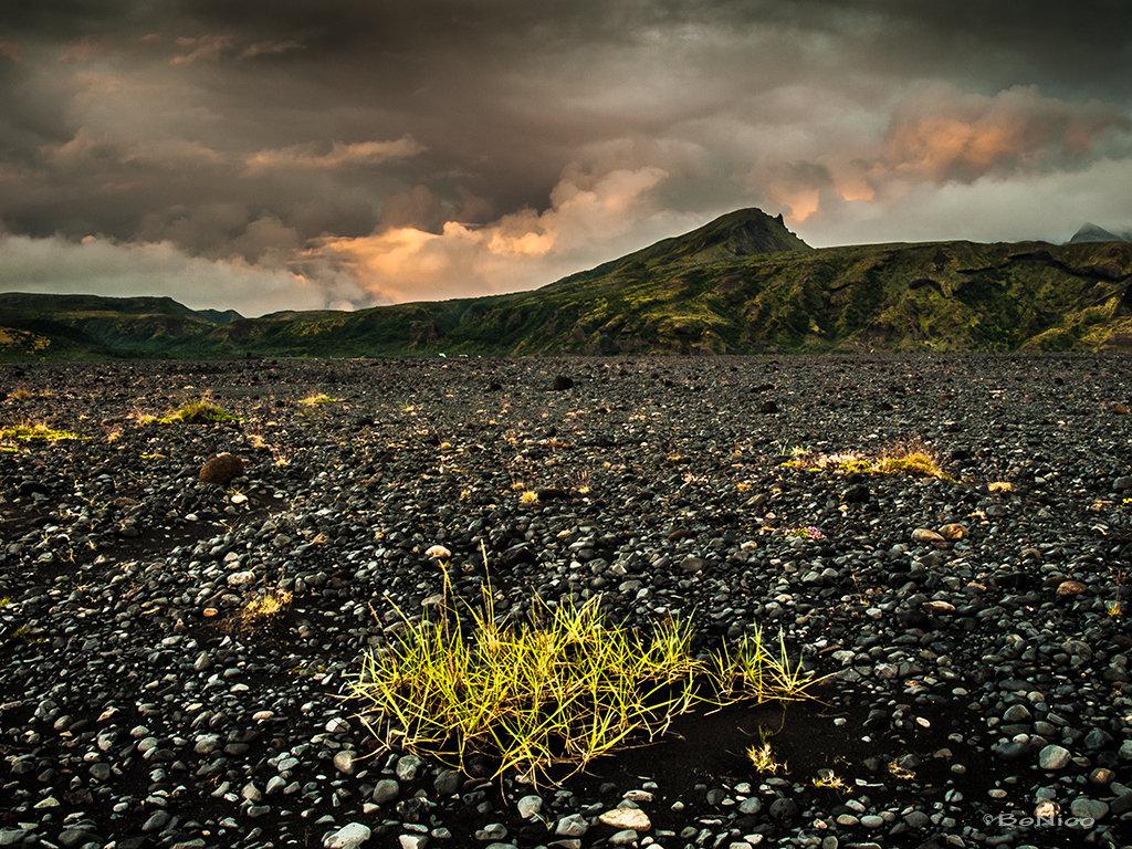 Iceland 12 - Thorsmork