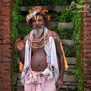 Holy Sadhu