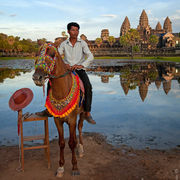 Horse for Rent in Angkor Wat